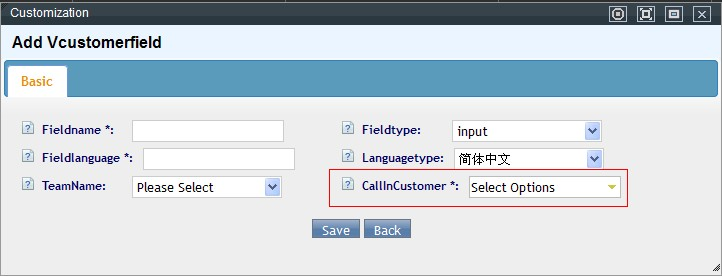 Add customize field for virtual customer